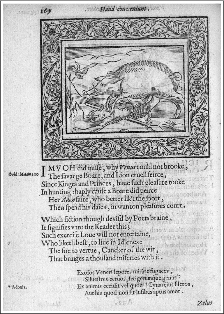 The Equinoctial Boar : Shakespeare and Spenser